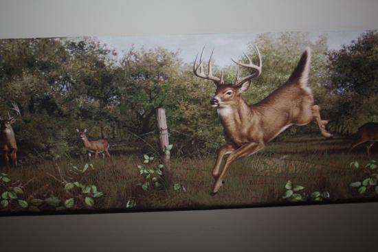 Deer Border