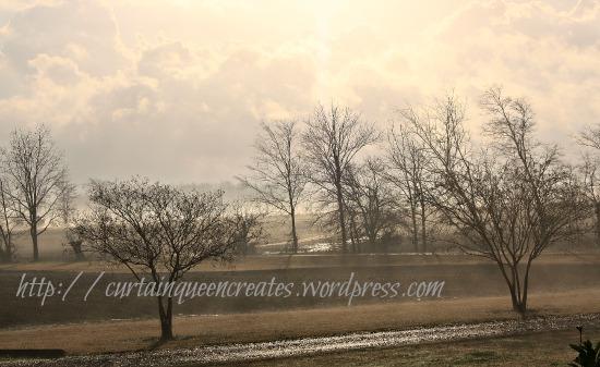 February Rains