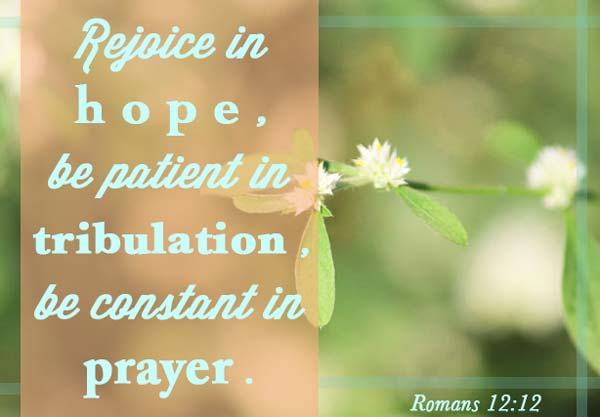 Romans 12.12